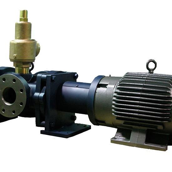 750X550_0051_pumpsPD